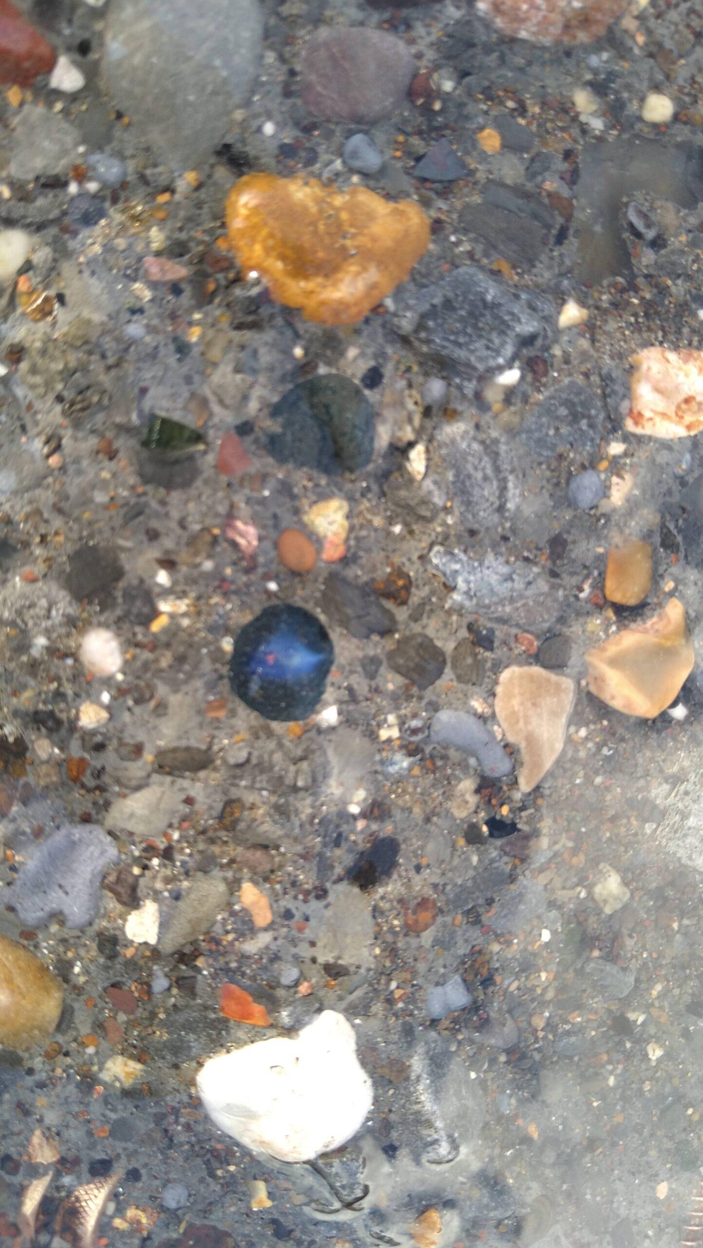 beachcombing finds (102)