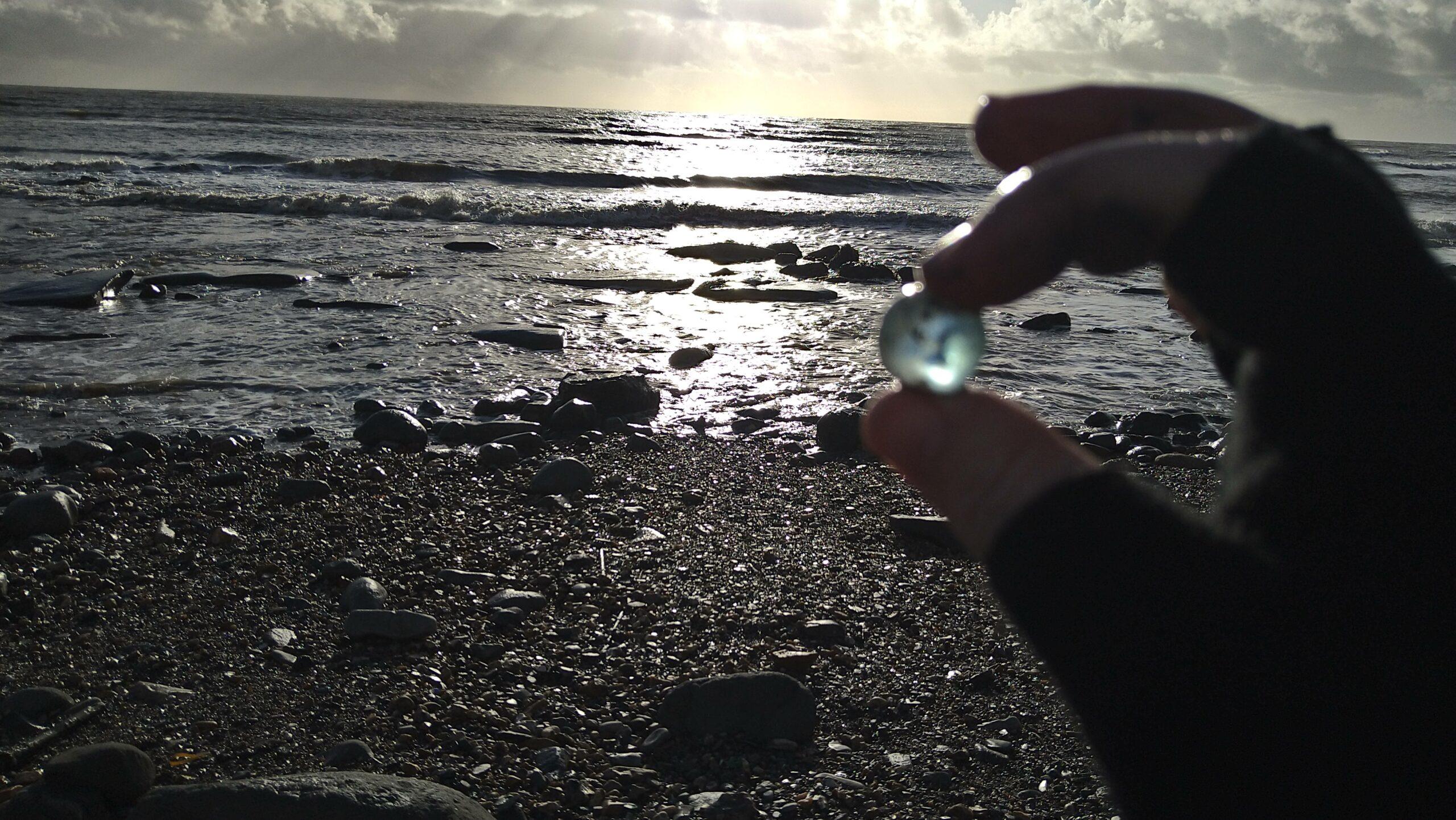 beachcombing finds (103)