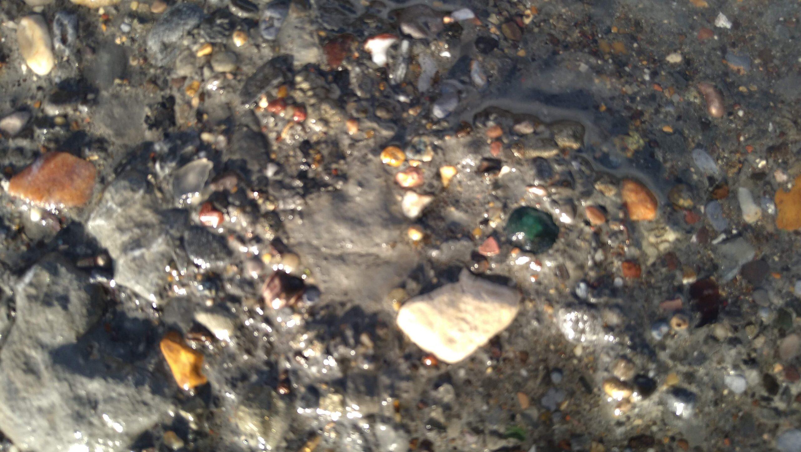 beachcombing finds (104)