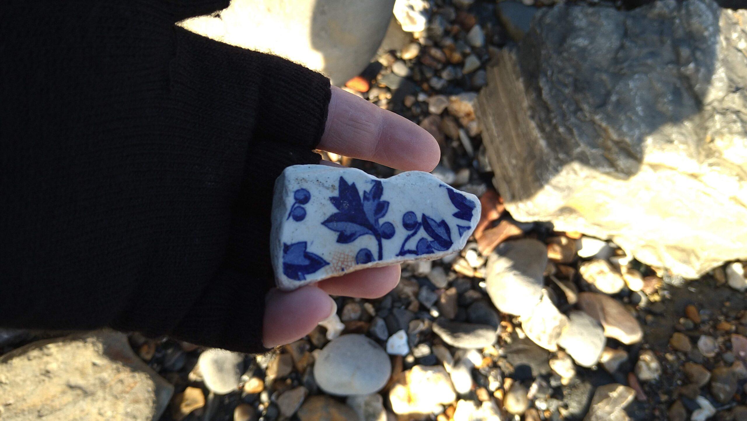 beachcombing finds (123)