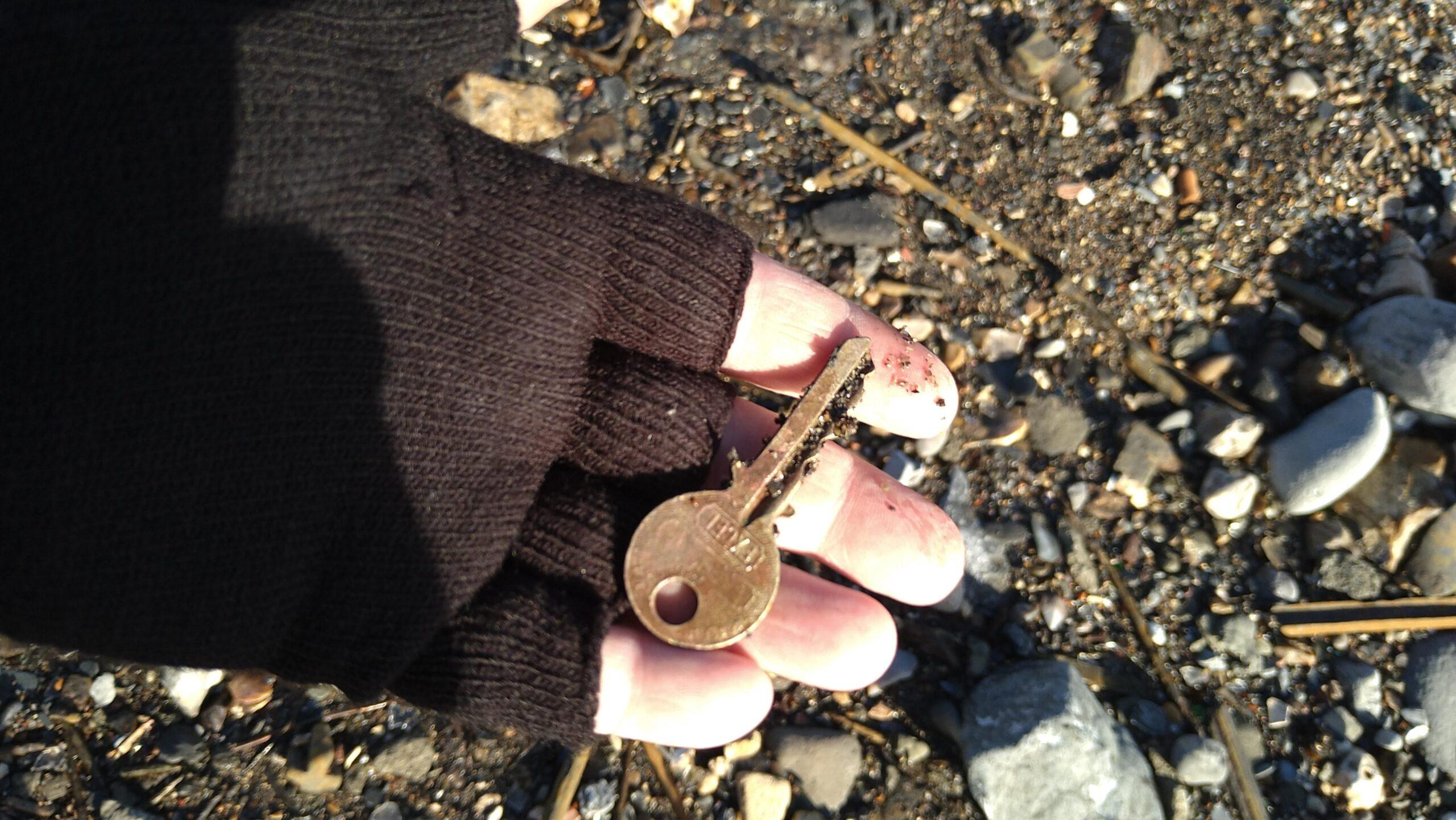 beachcombing finds (128)