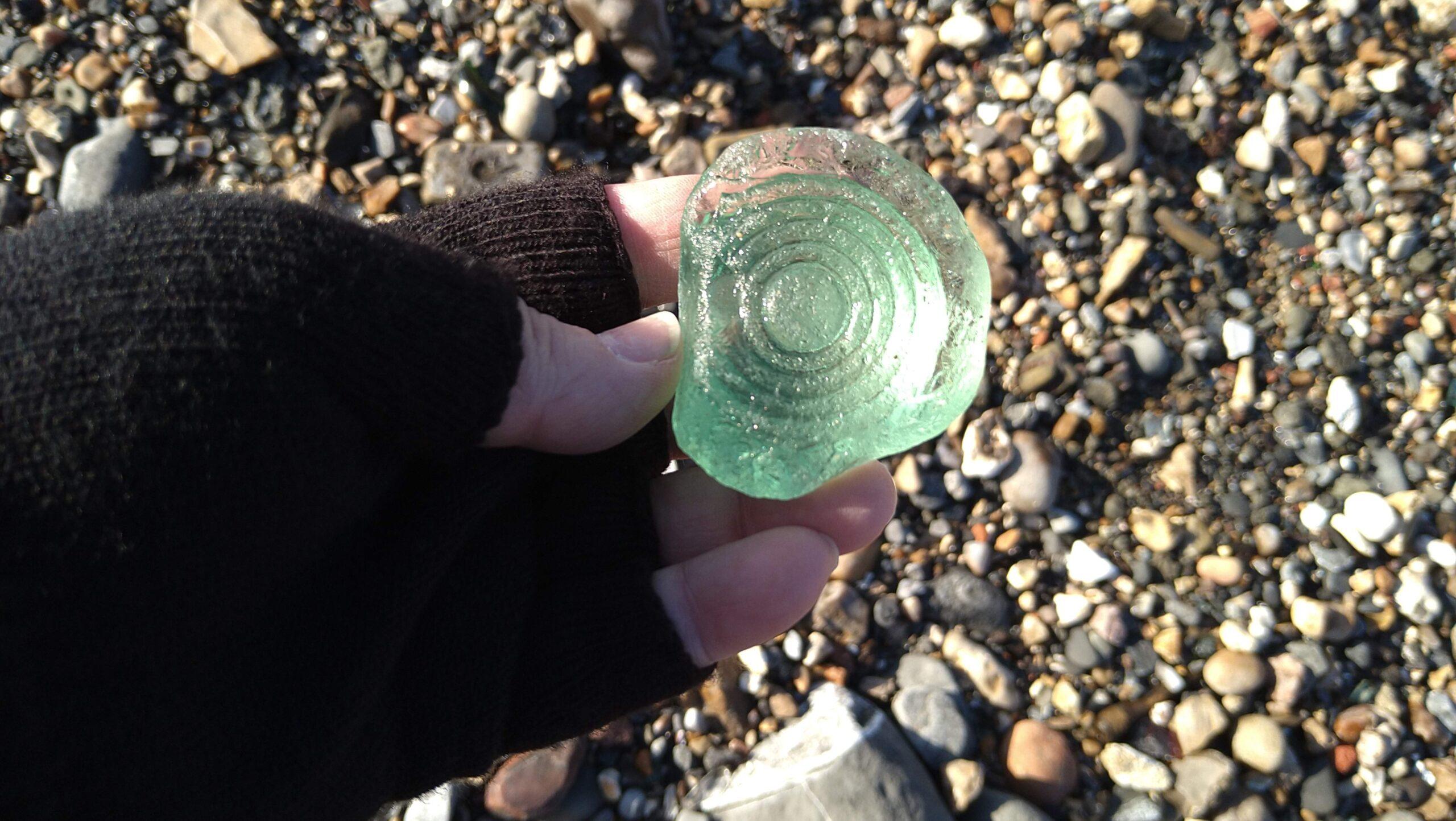 beachcombing finds (130)