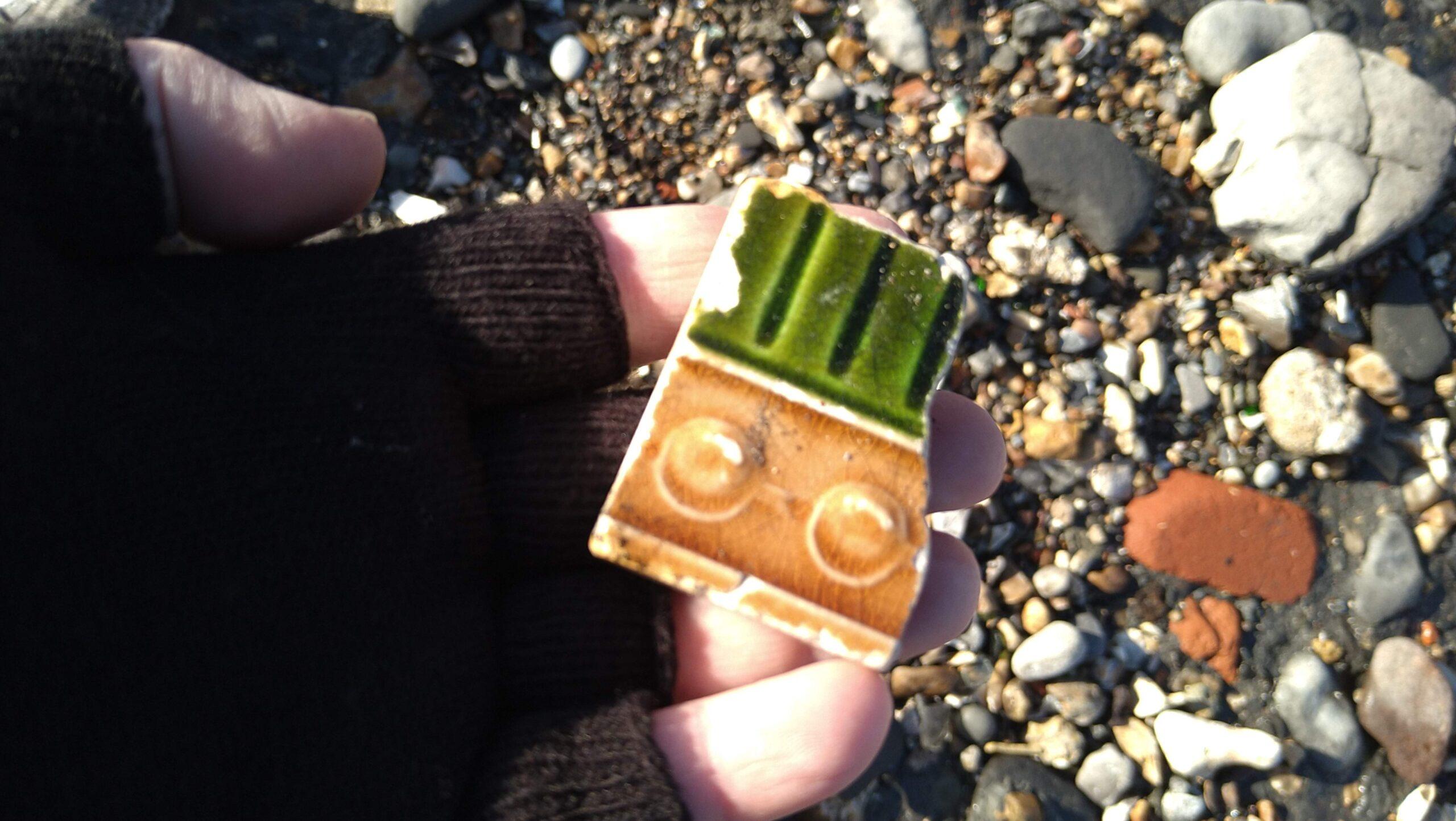 beachcombing finds (131)