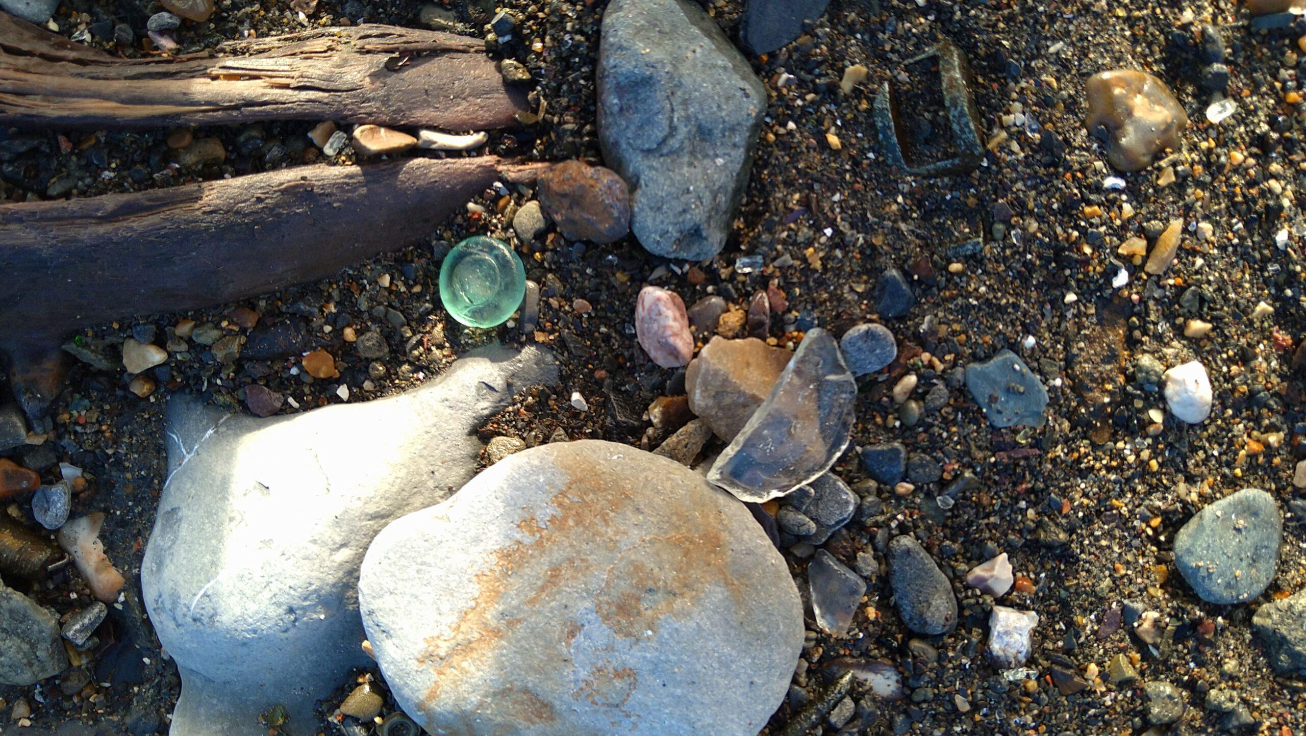 beachcombing finds (138)