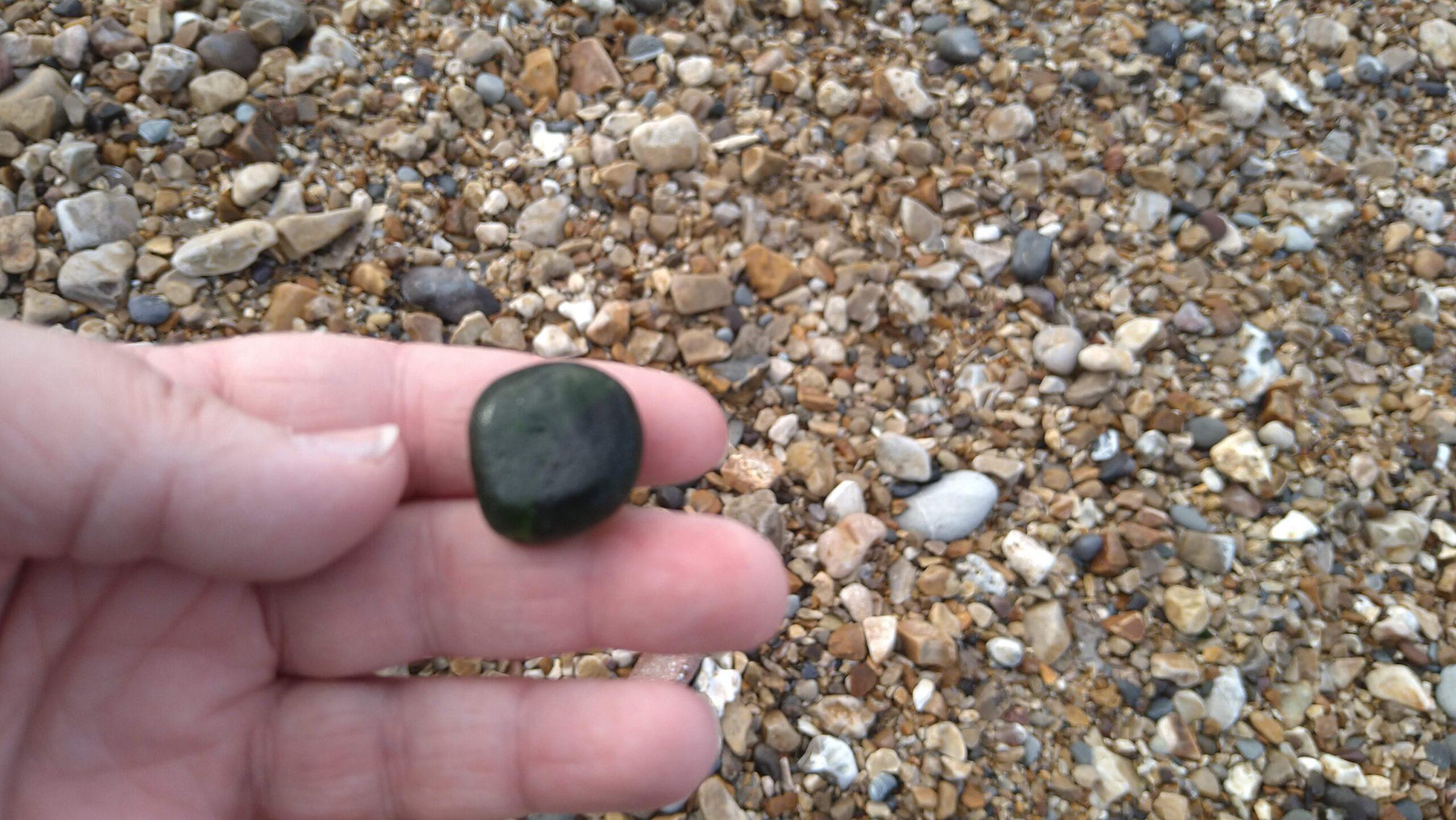 beachcombing finds (25)
