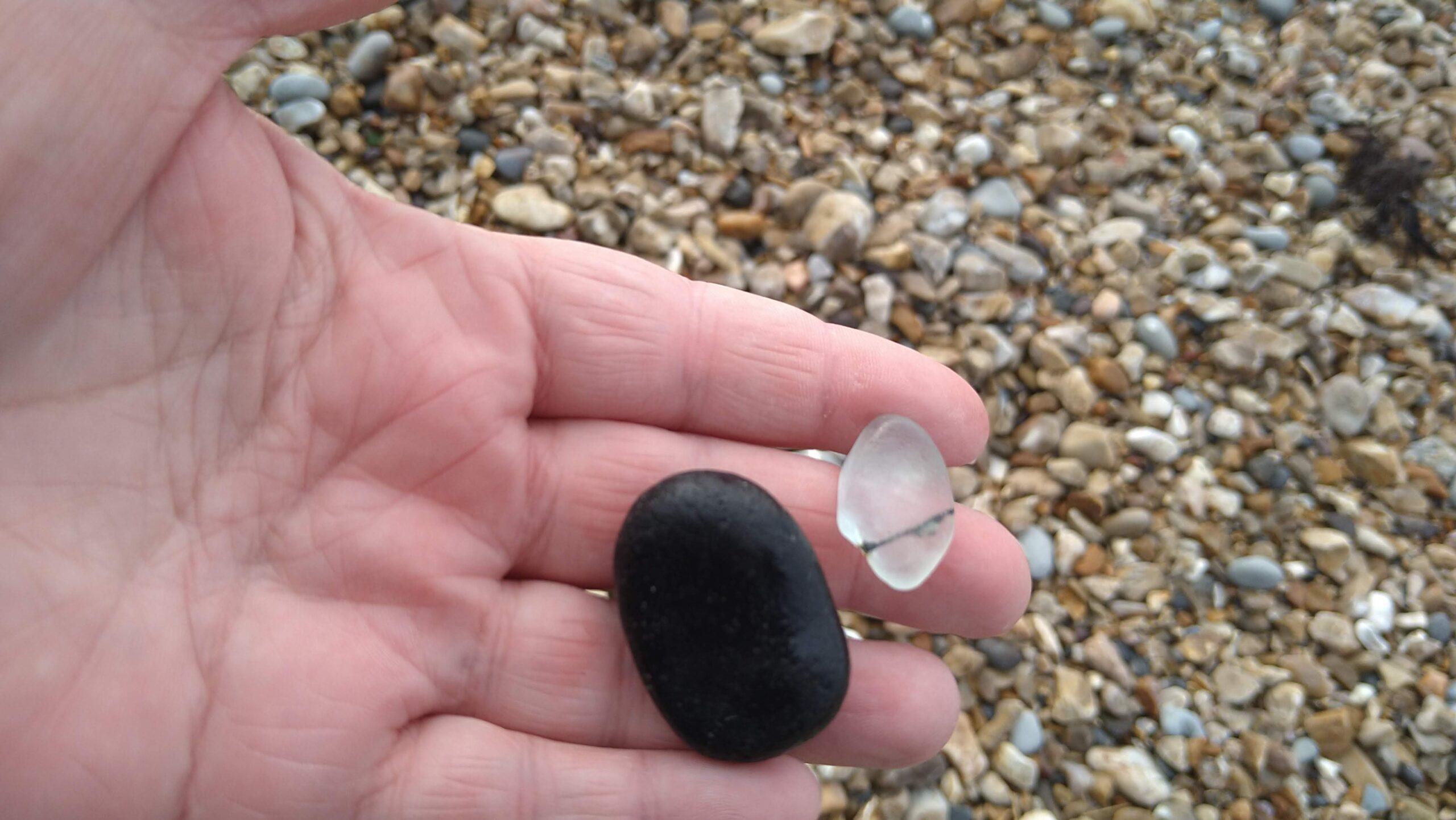 beachcombing finds (29)