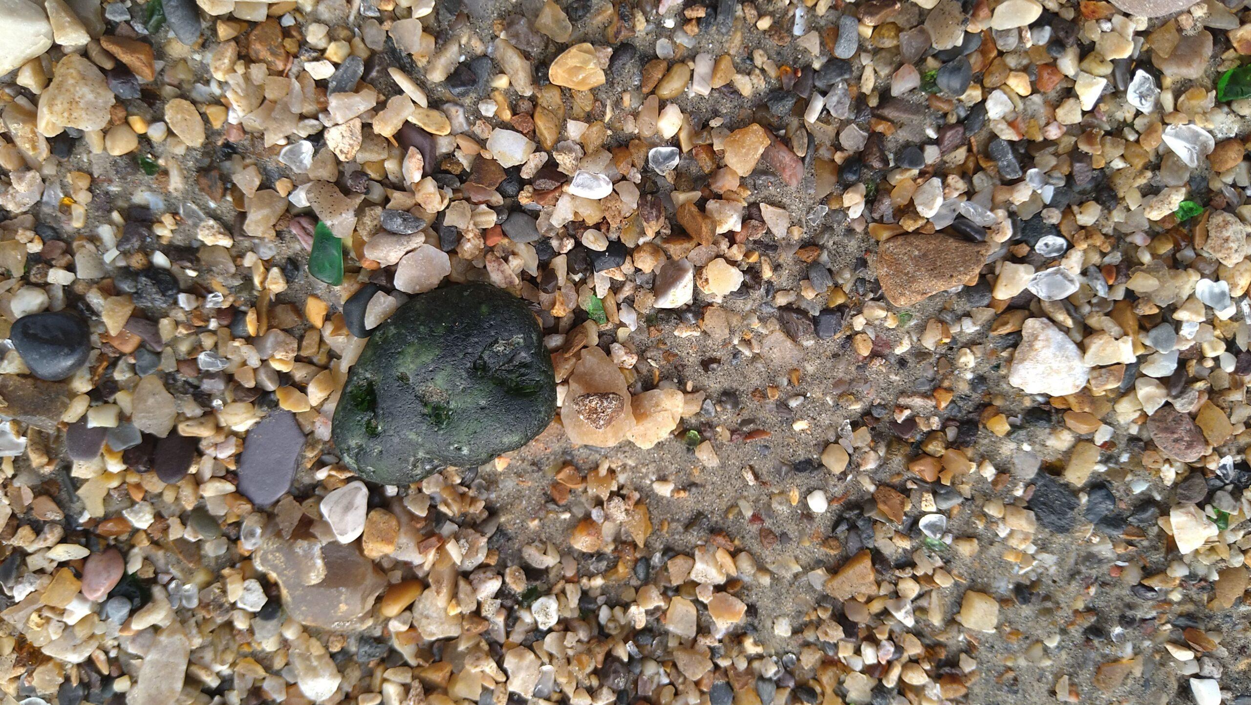 beachcombing finds (40)
