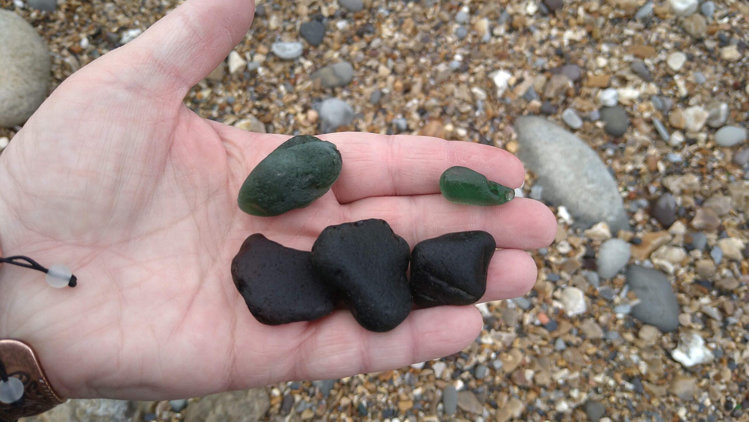 beachcombing finds (49)