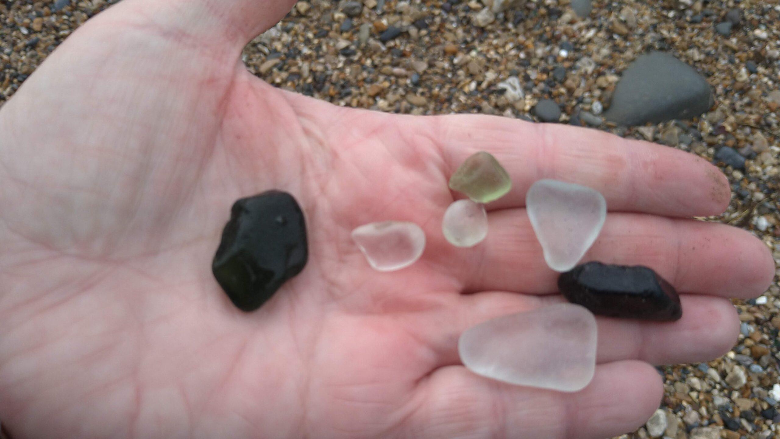 beachcombing finds (52)