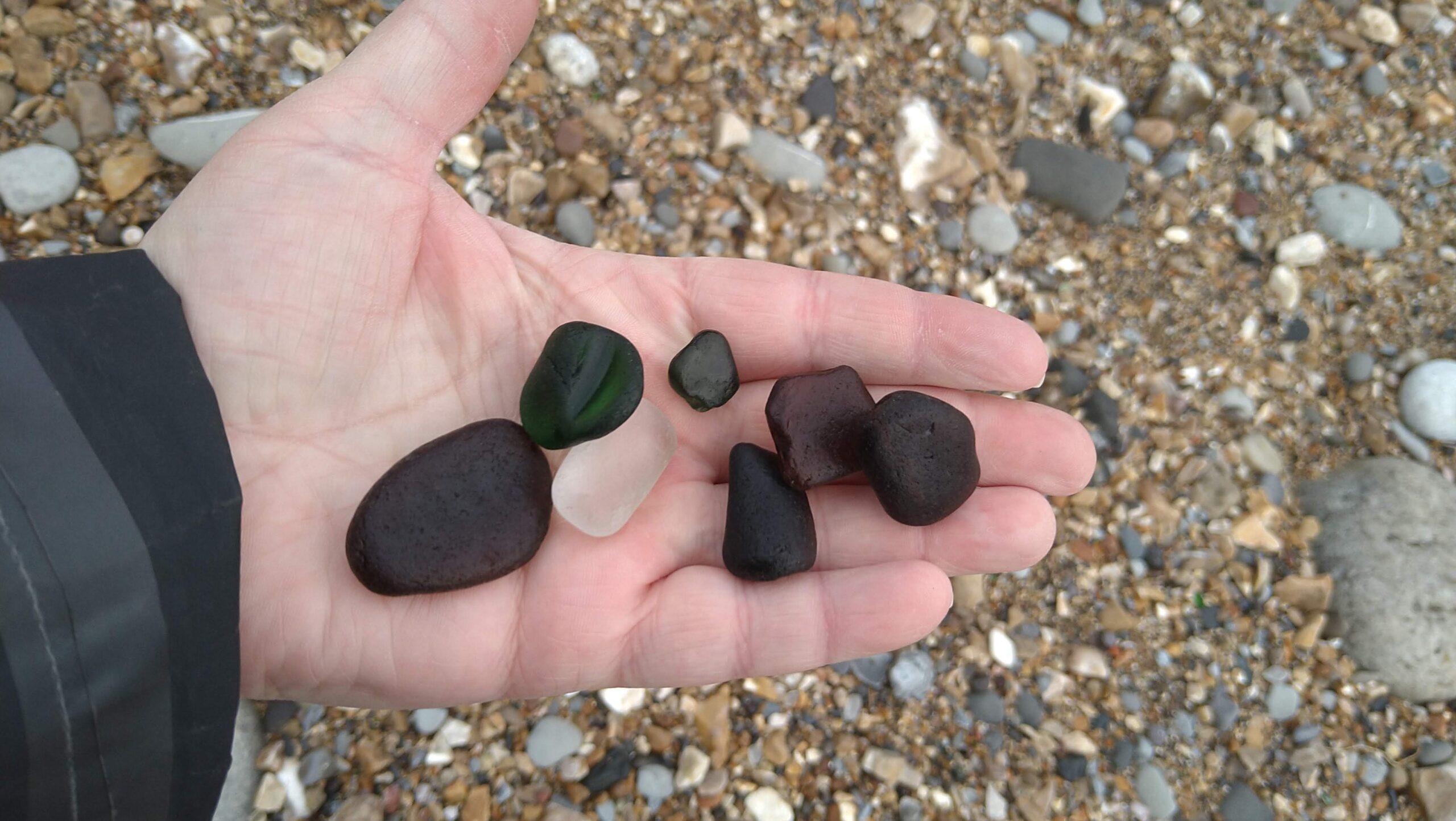 beachcombing finds (57)