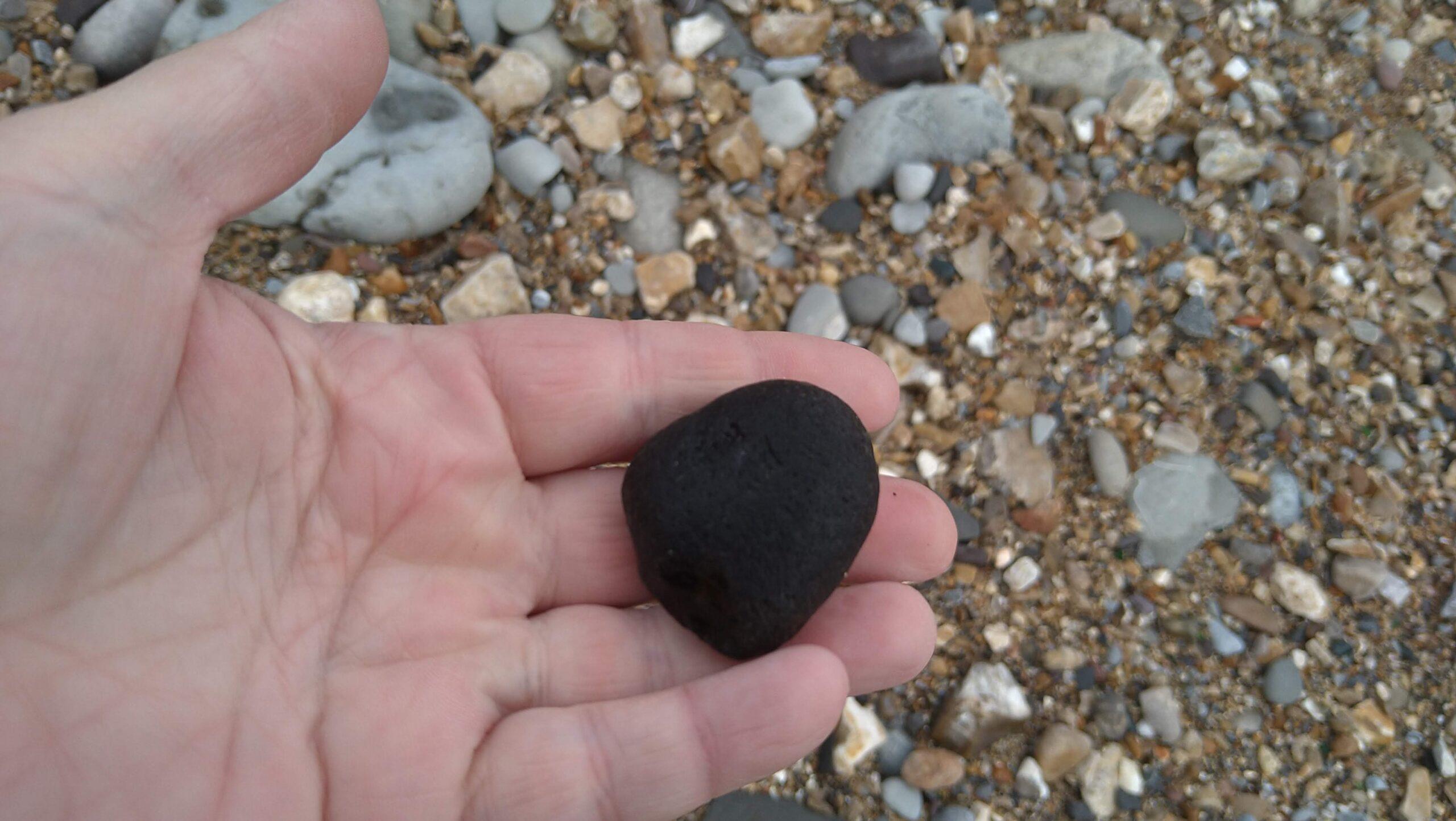 beachcombing finds (58)