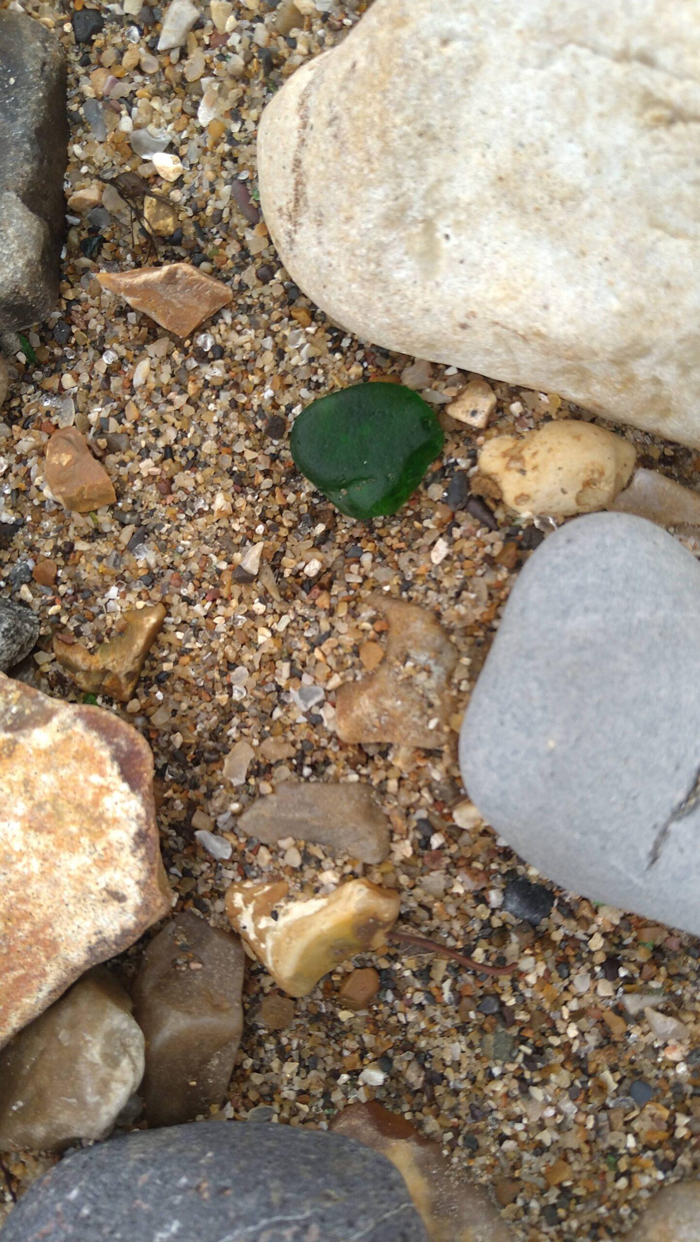 beachcombing finds (65)