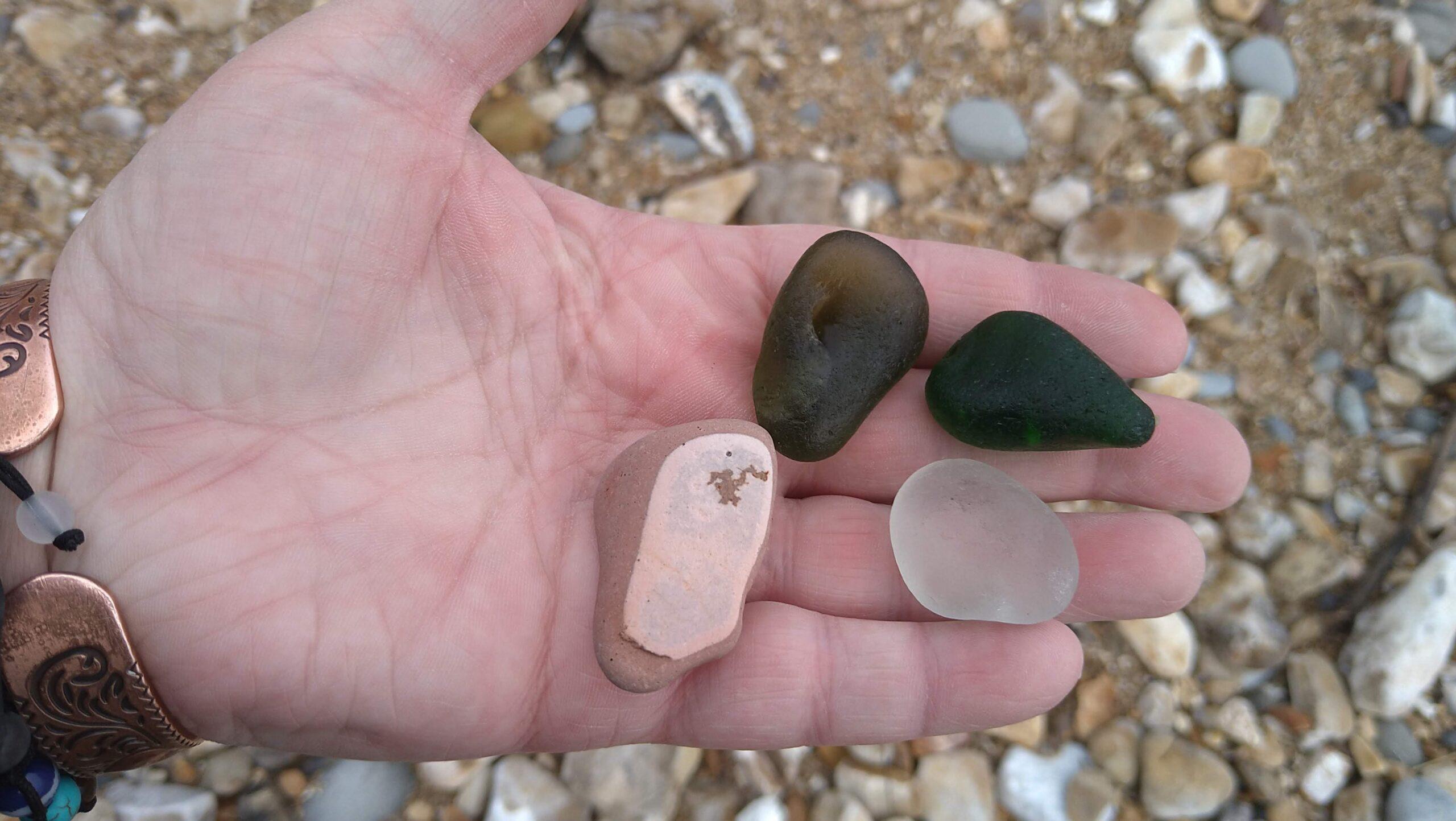 beachcombing finds (66)