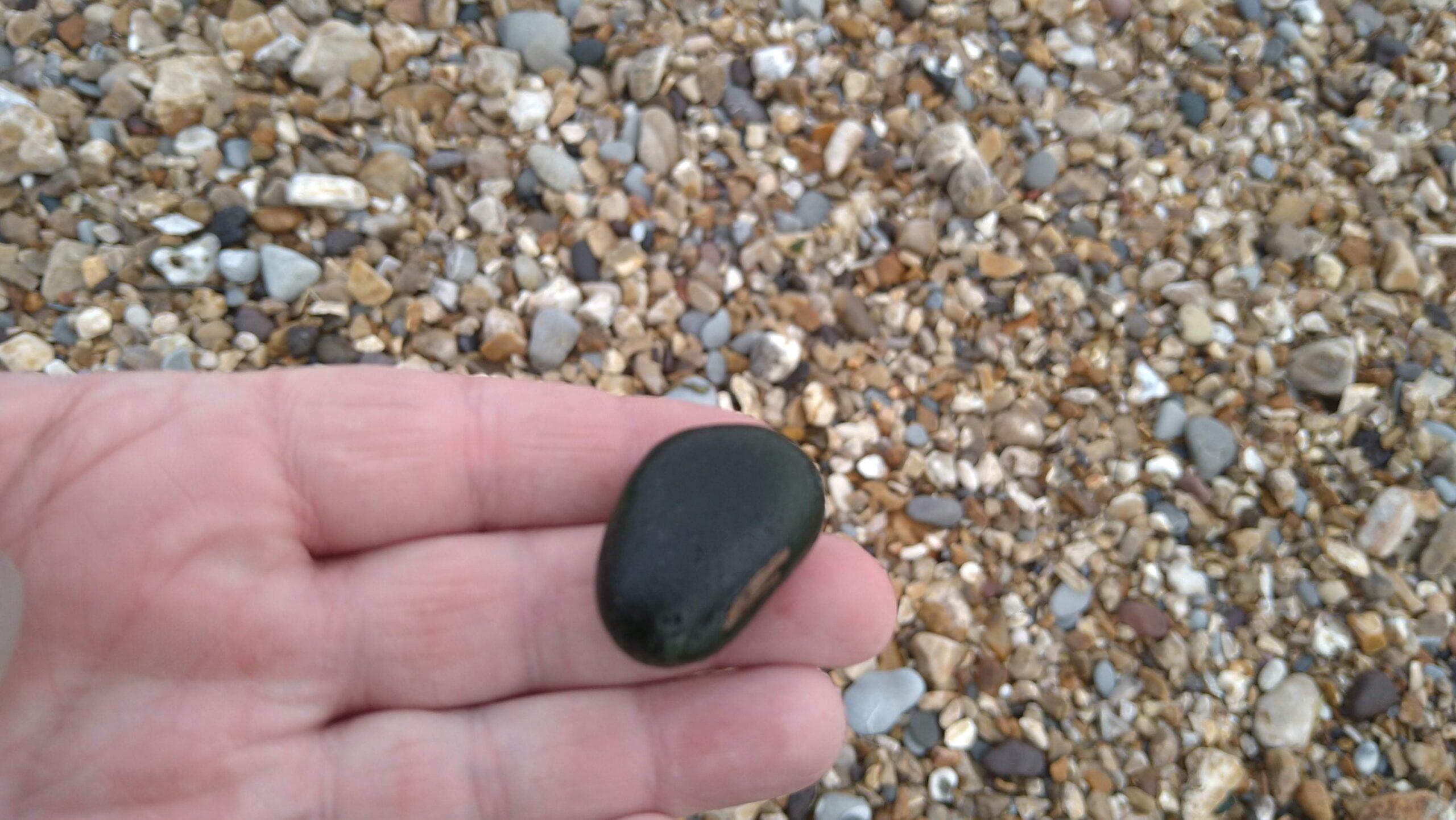 beachcombing finds (70)
