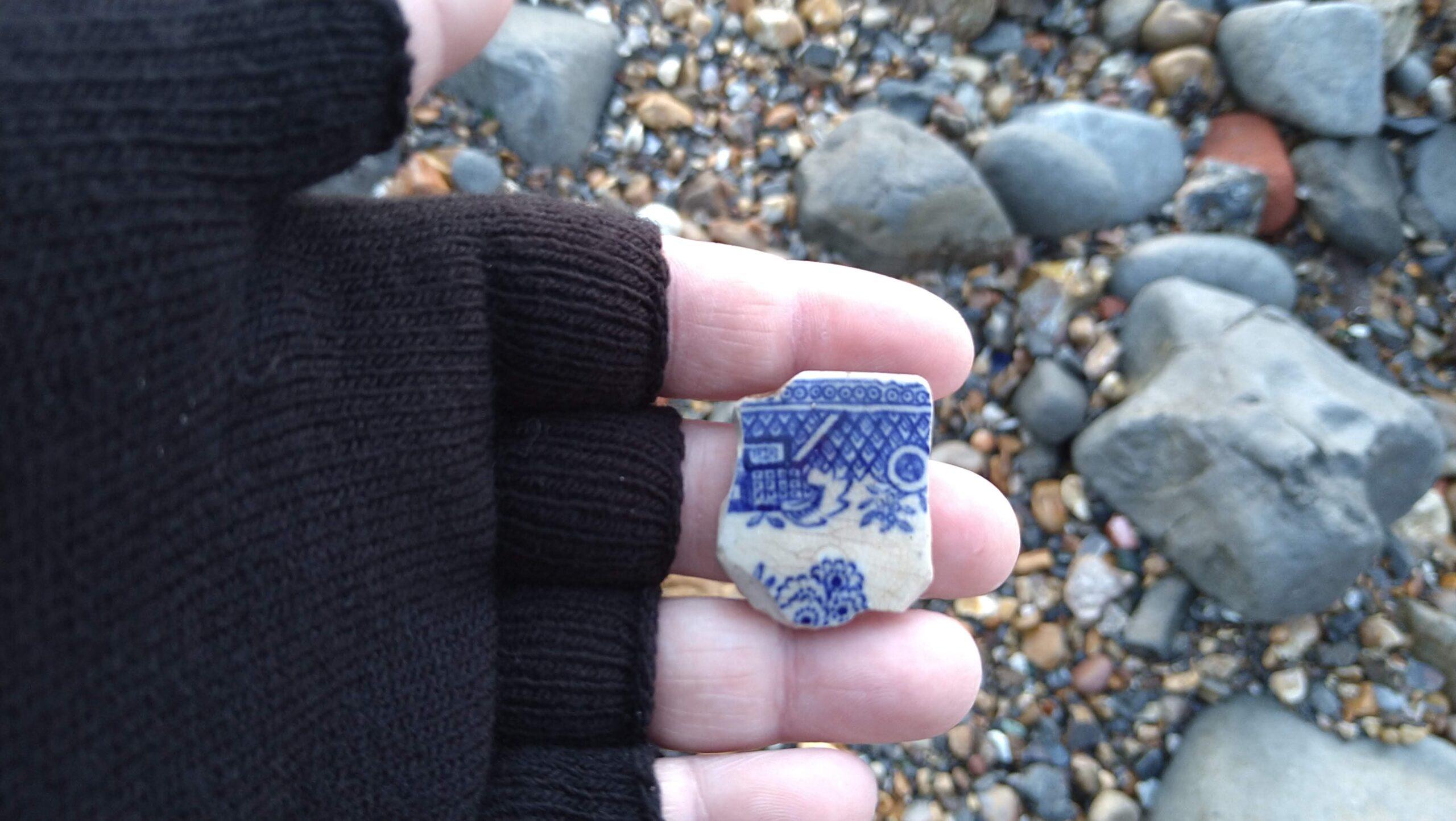 beachcombing finds (74)