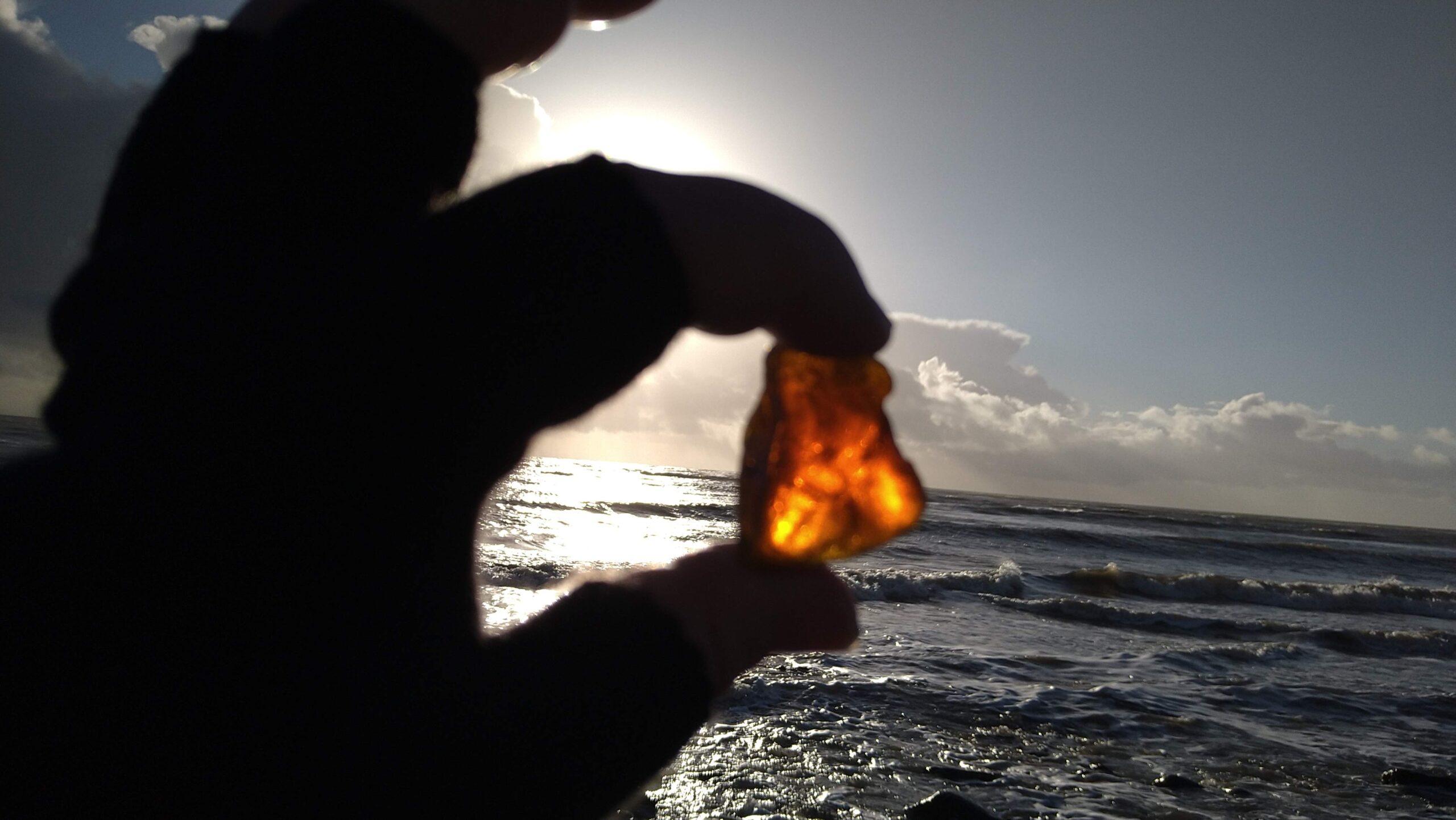 beachcombing finds (82)