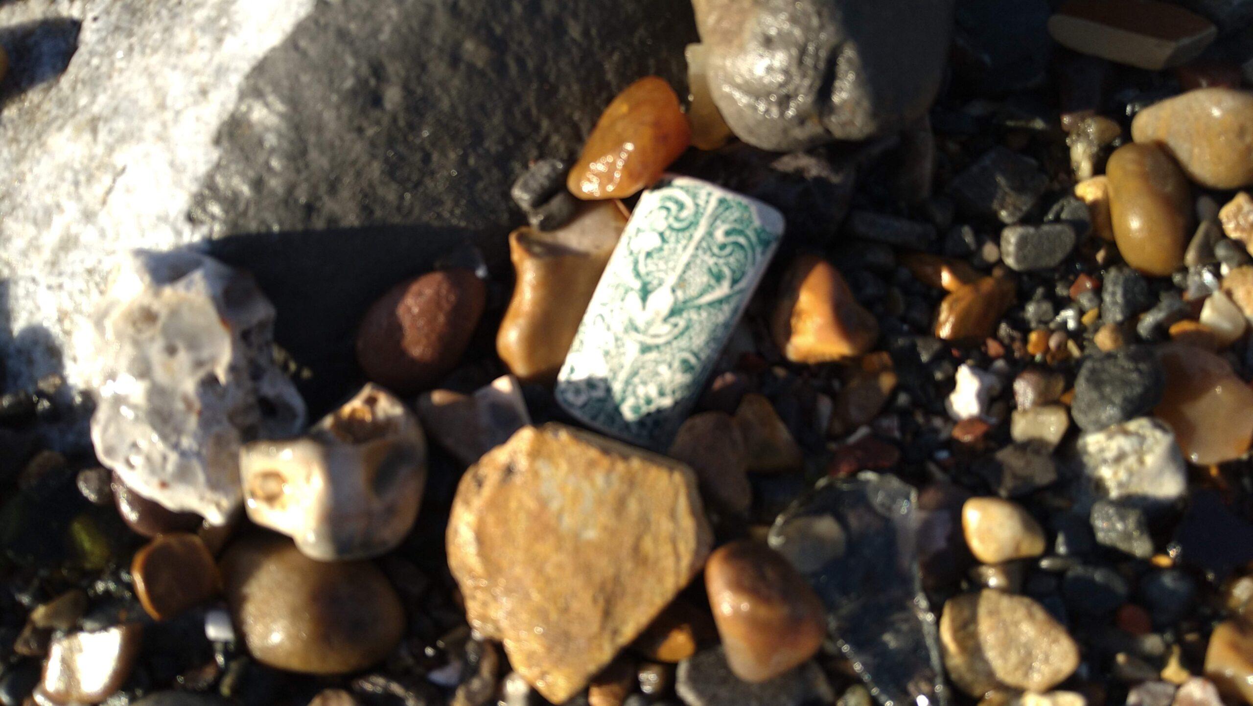 beachcombing finds (83)