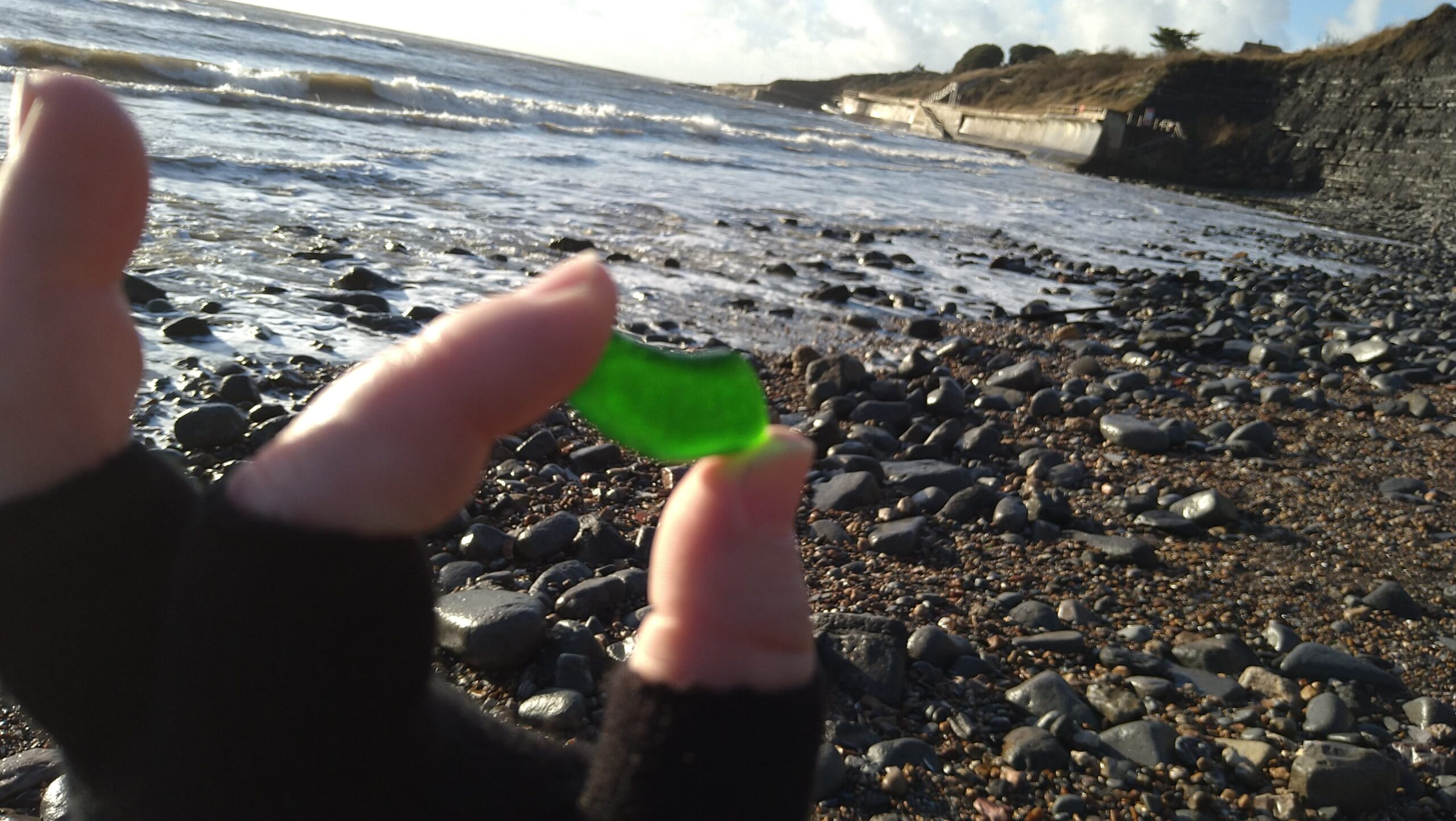 beachcombing finds (85)