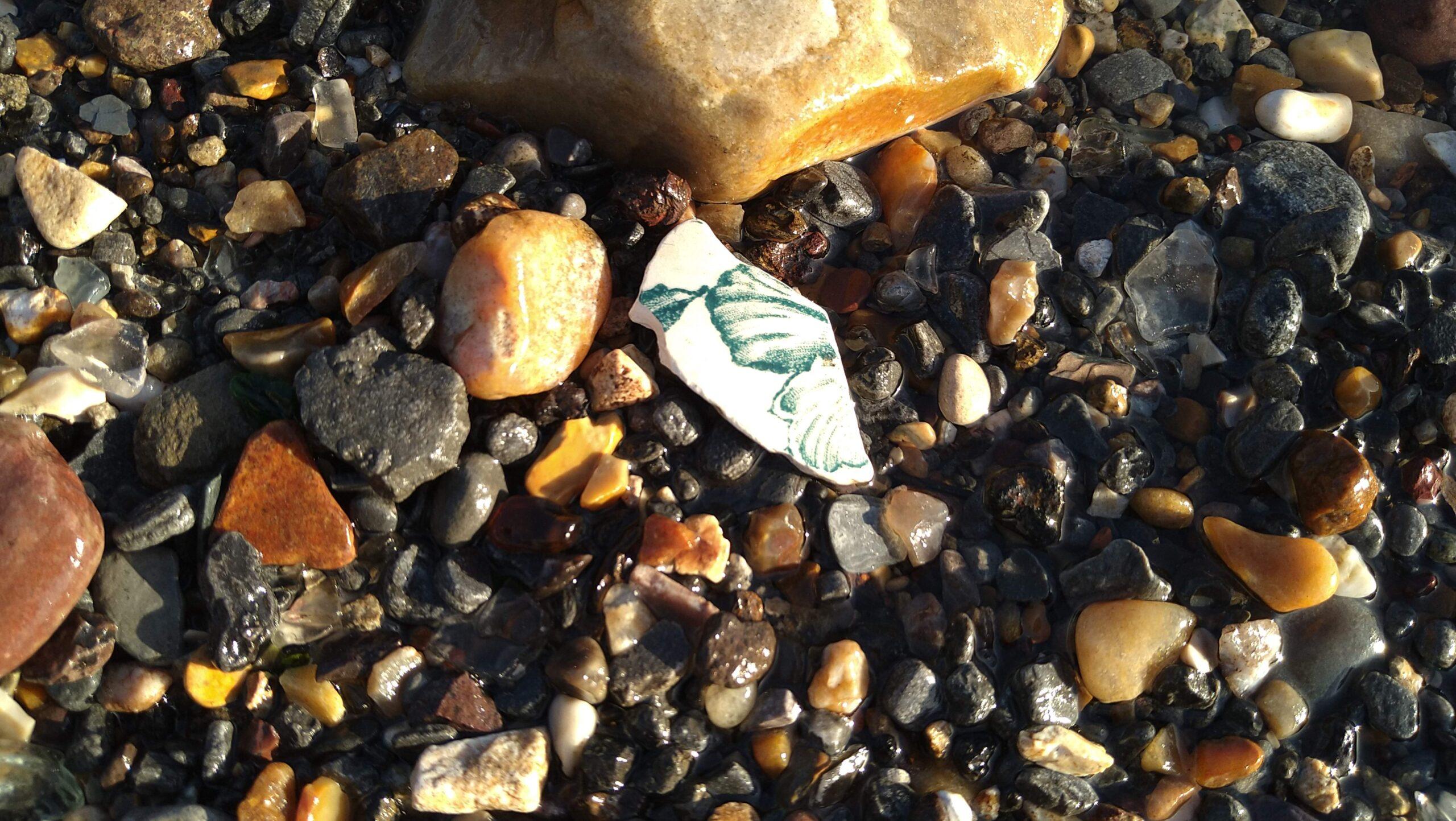 beachcombing finds (88)