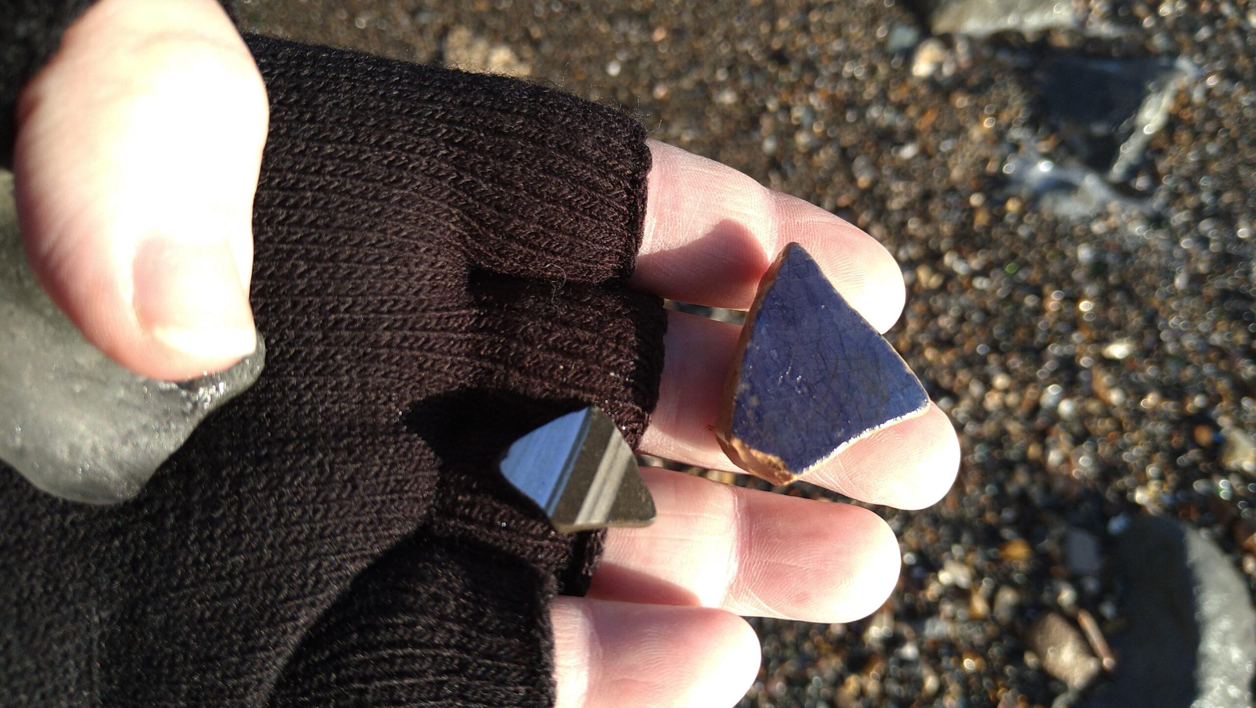 beachcombing finds (91)