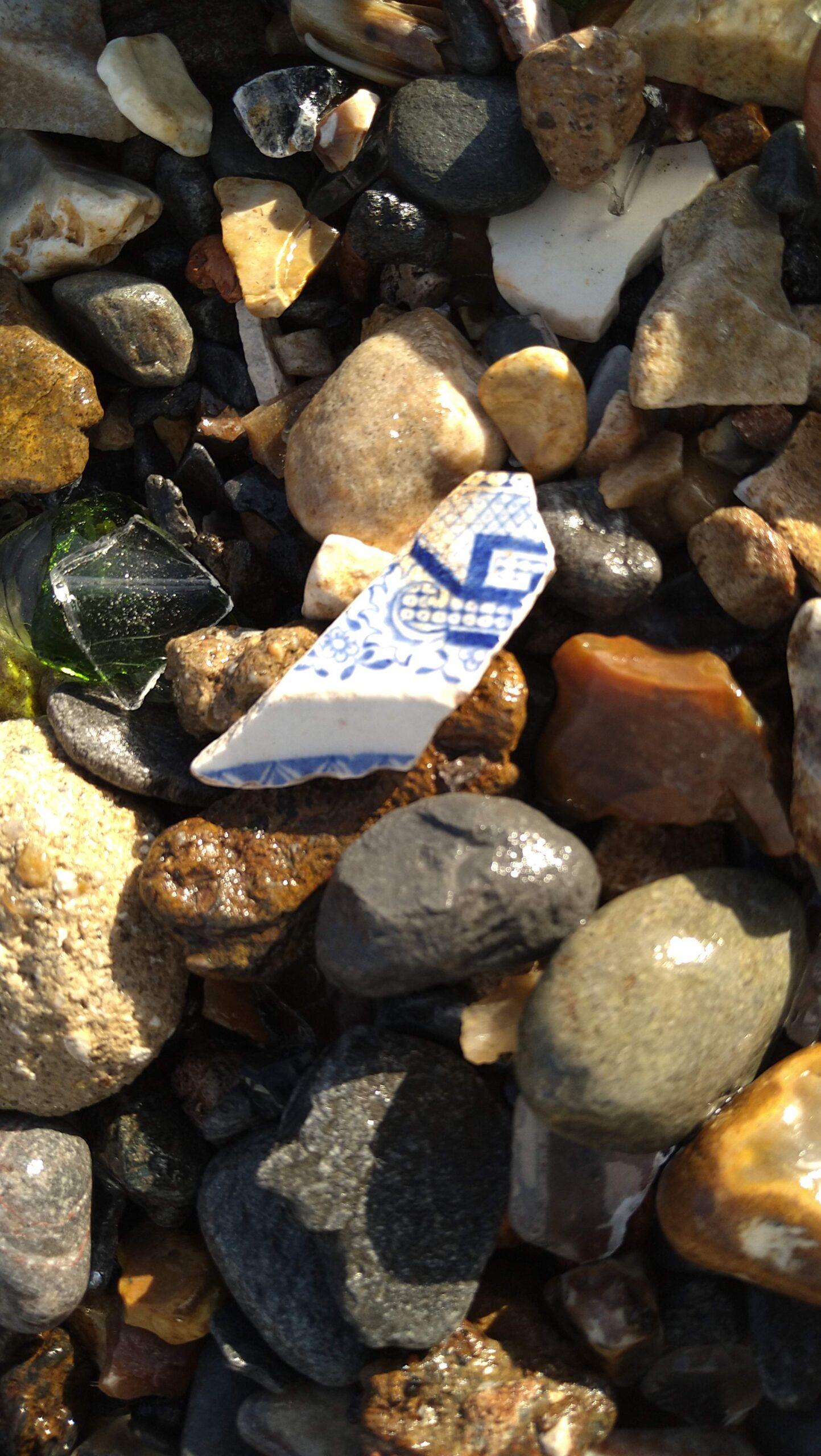 beachcombing finds (92)
