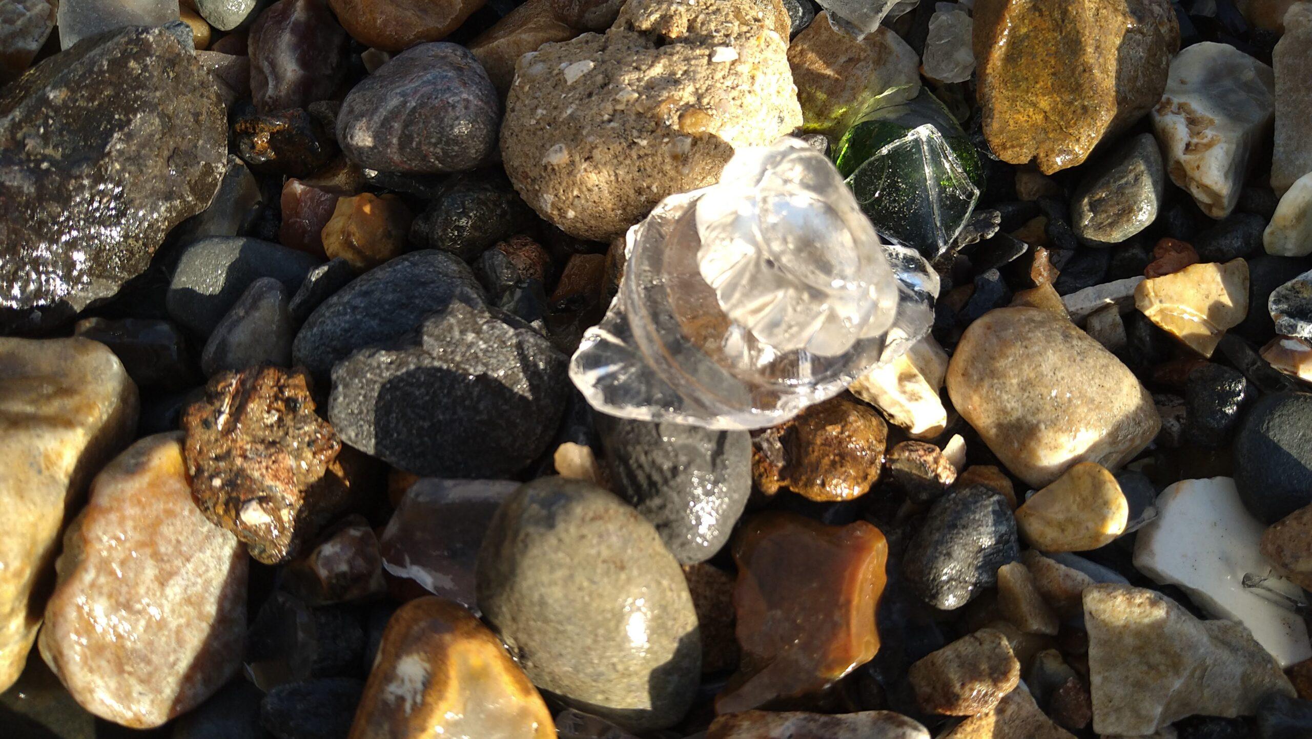 beachcombing finds (93)