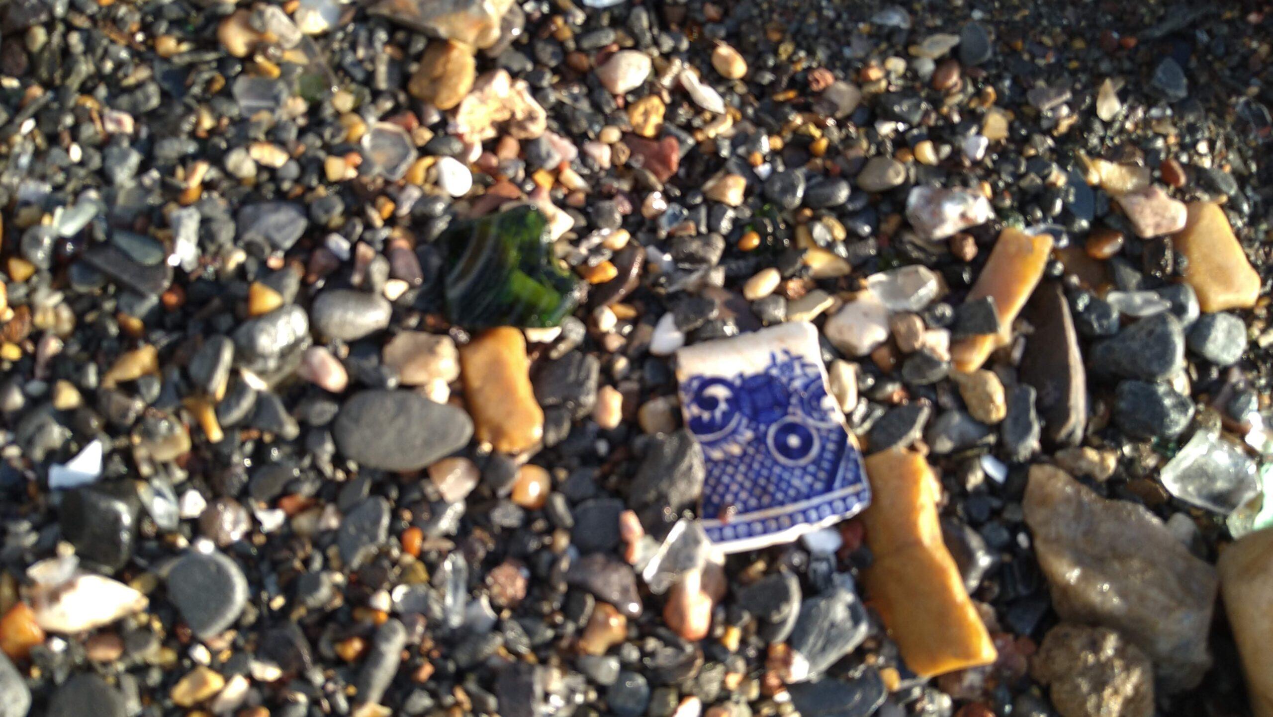beachcombing finds (95)