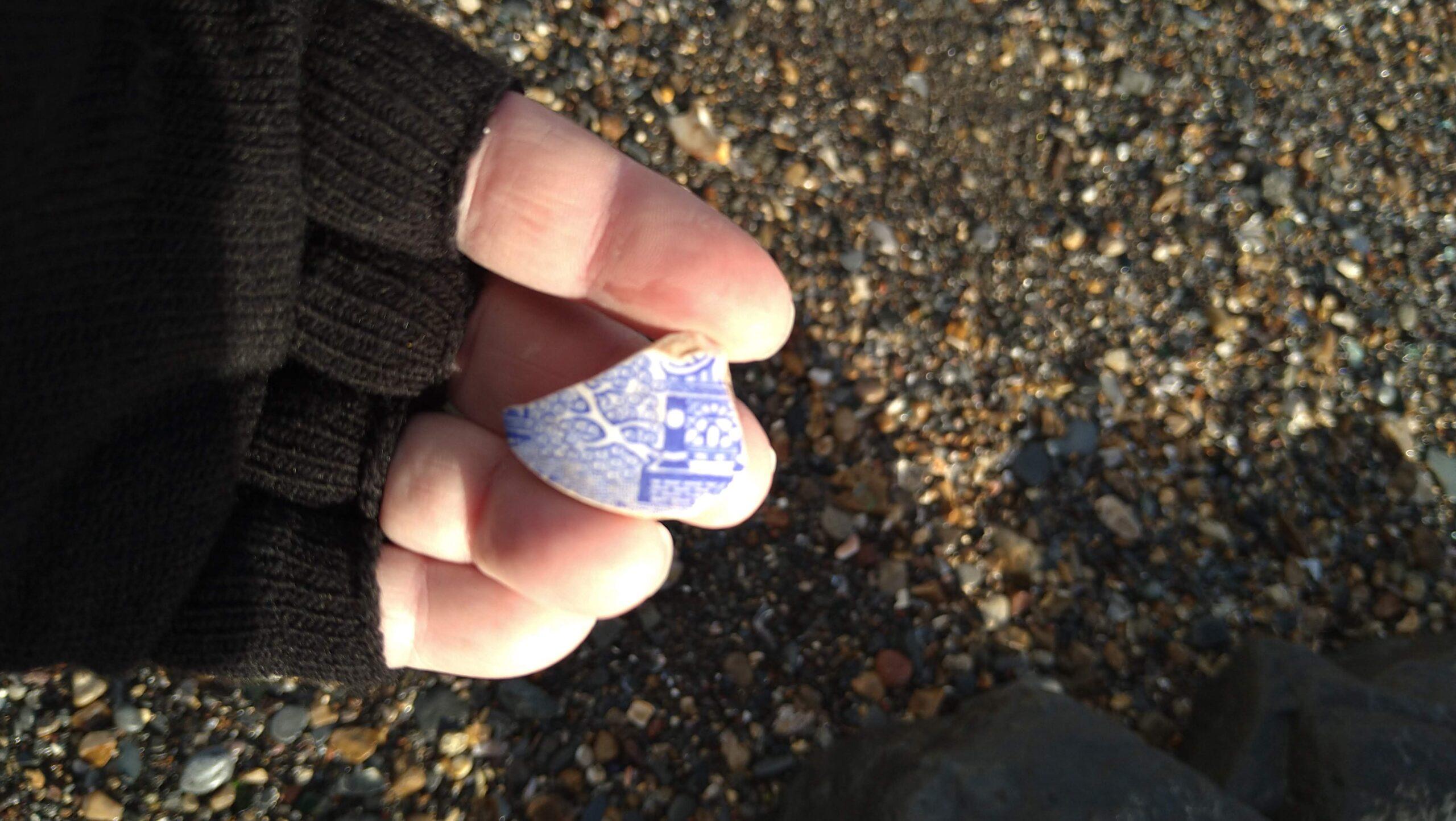 beachcombing finds (97)