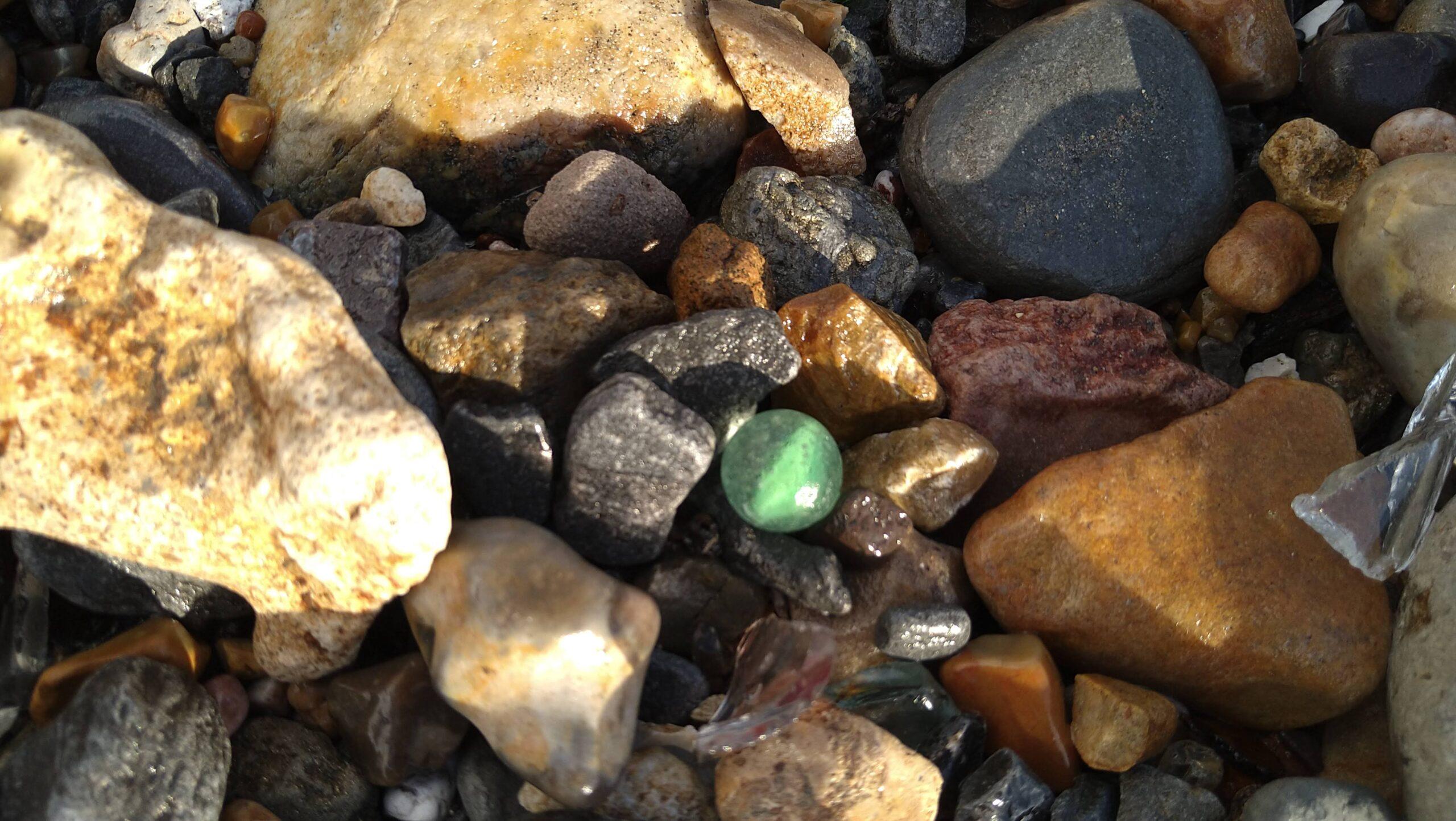 beachcombing finds (98)